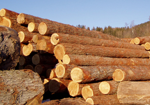 tronchi-legno